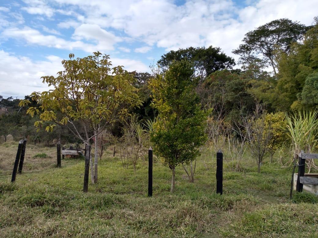 sitio na cidade de baependi , sul de minas , com 4,5 ha , tem muita água ,13 klm da cidade. - 319