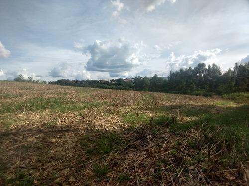 sítio para comprar no zona rural em nepomuceno/mg - nep952