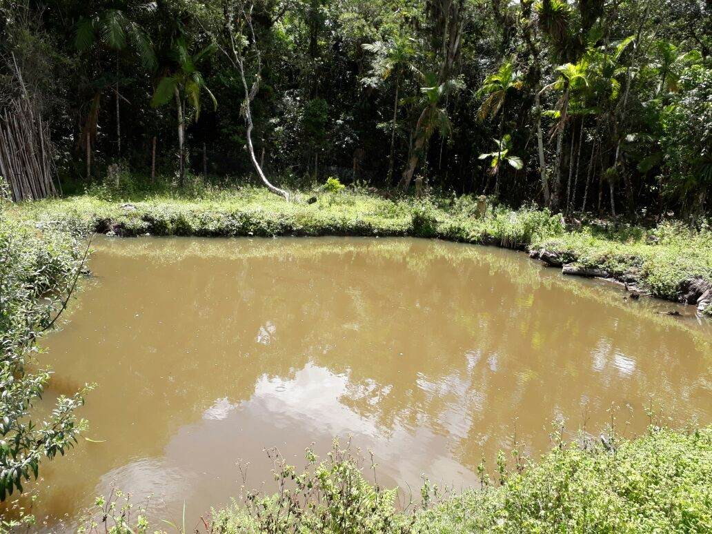 sitio plano com lago e ribeirão ref. 1081