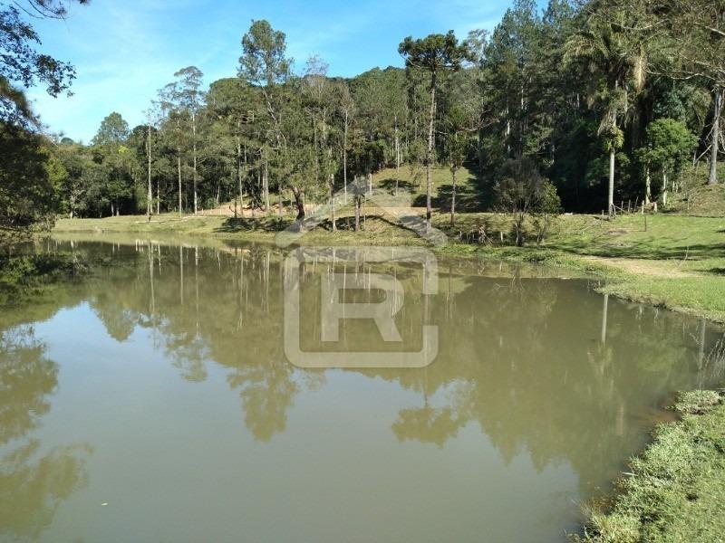 sitio rico em água, com 2 lagos grandes, ideal para pesqueiro! - 93 - 34182686