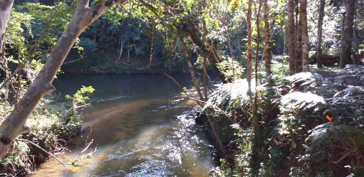sítio à venda 10 alqueires lagos rio nascentes 1,5 km da br