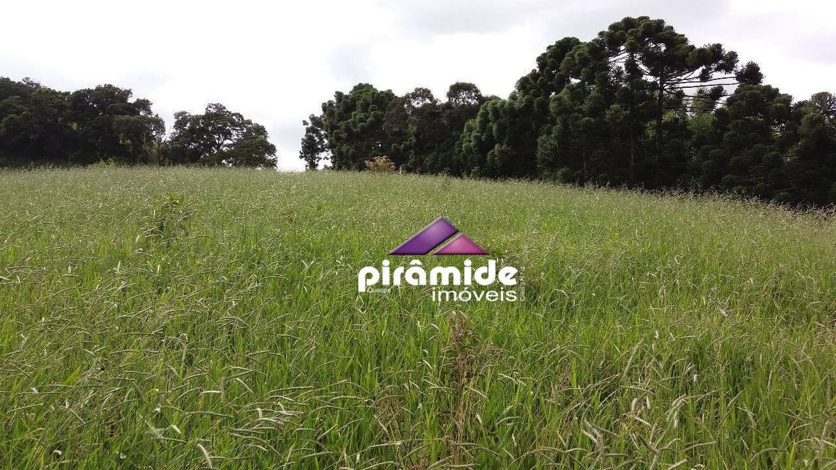 sítio à venda, 117000 m² por r$ 500.000,00 - zona rural - são bento do sapucaí/sp - si0022