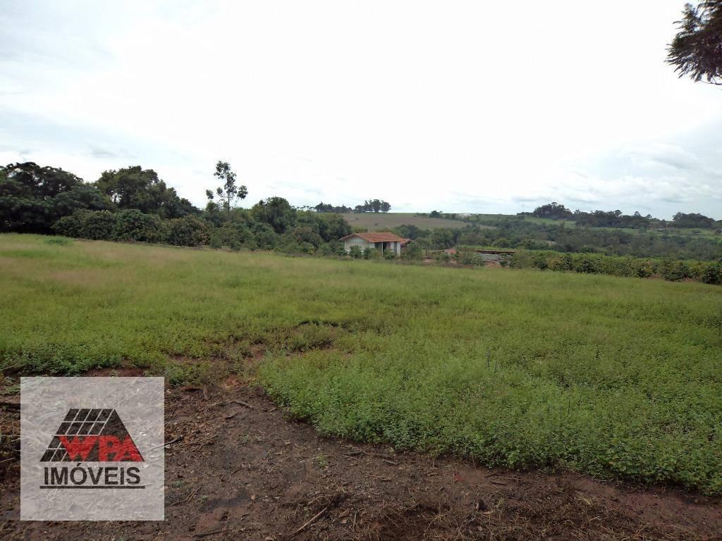 sítio à venda, 208370 m² - bosque dos eucaliptos - nova odessa/sp - si0003