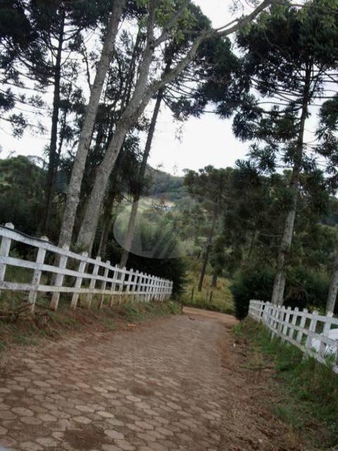 sítio à venda em bom jardim - si193629