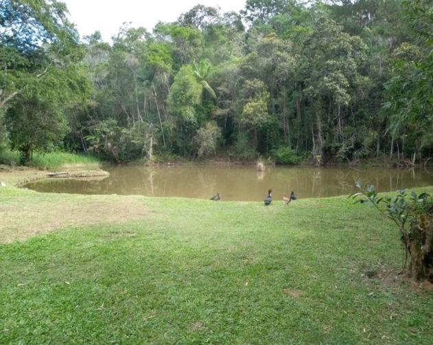 sitio à venda em juquitiba com nascente lago 1,8 alqueires