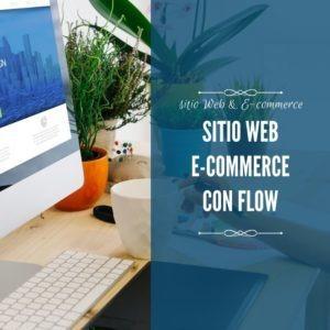 sitio web e-commerce