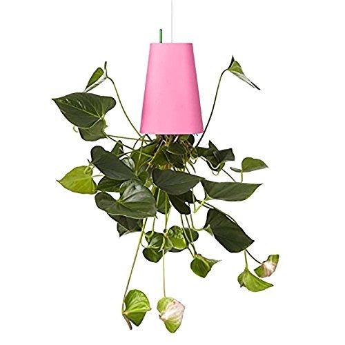 sky planter vaso decorativo jardim invertido pronta entrega