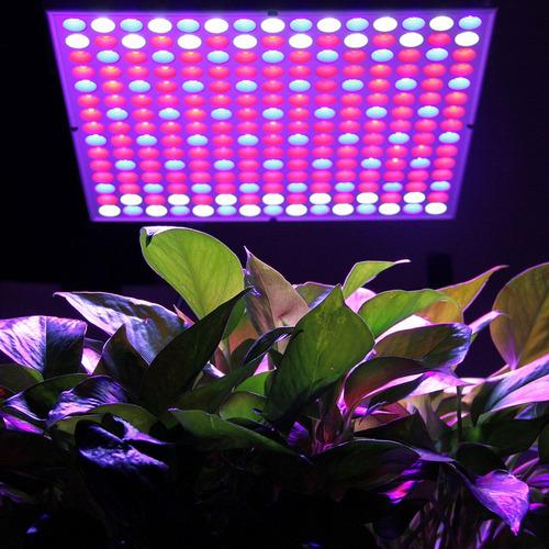 smd led ? planta interior crecer luz + colgante equipo .