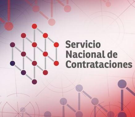 snc servicio nacional de contratista contador publico