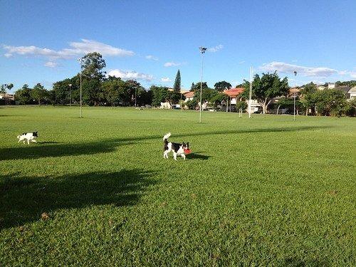 sobrado a venda no bairro jardim esplanada em são josé dos - sobv923-1