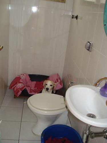 sobrado ipiranga 2 suítes 2 dormitórios 2 banheiros 4 vagas 348 m2 - 1741