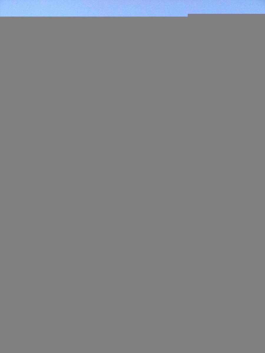 sobrado - sao jose - ref: 38226 - v-38226