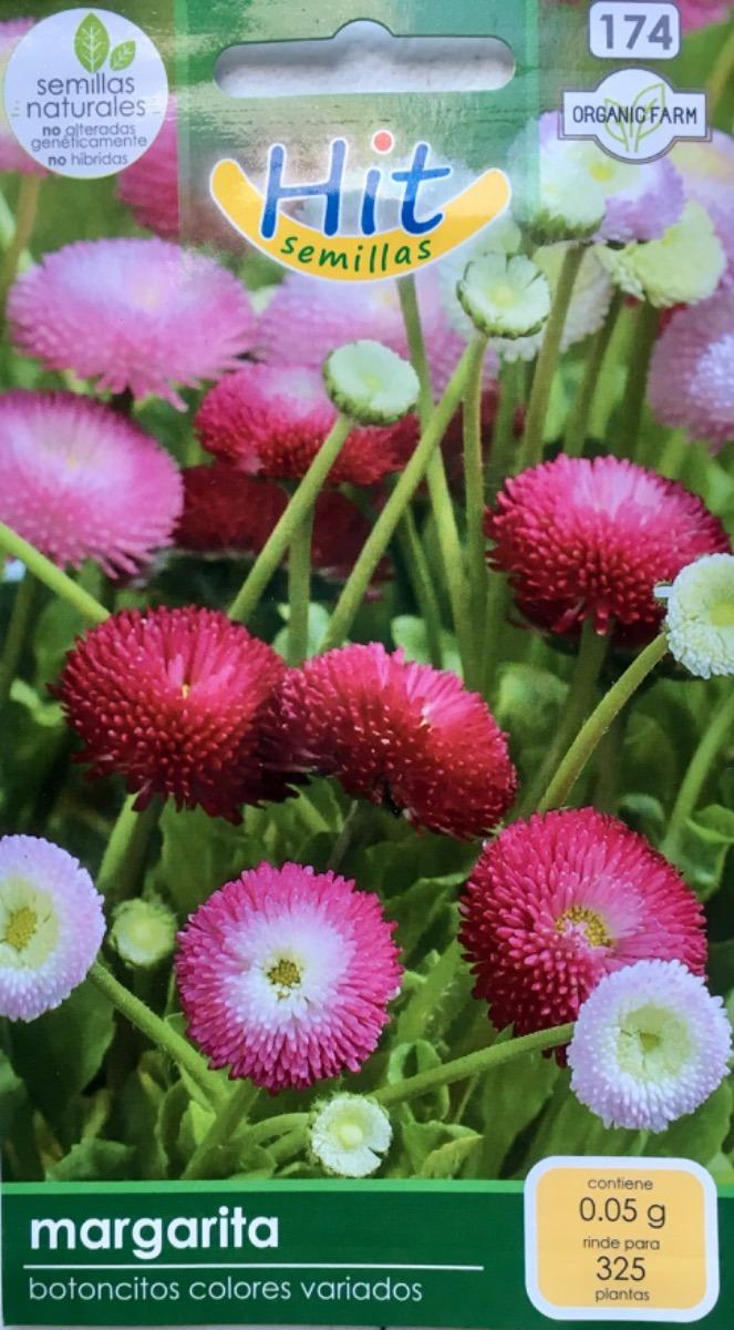 Sobre C Semillas De Flores De Margaritas Marca Hit Semillas