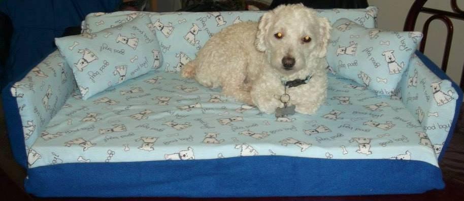 Sof cama para perros y gatos en mercado libre for Construir piscina para perros