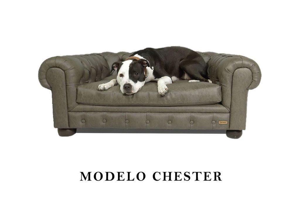 Sofa Para Perros Mod Chester Canape Habano Extra Large