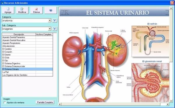 Software Agenda Turnos Consultorios Clínicas Kinesiología - $ 2.500 ...