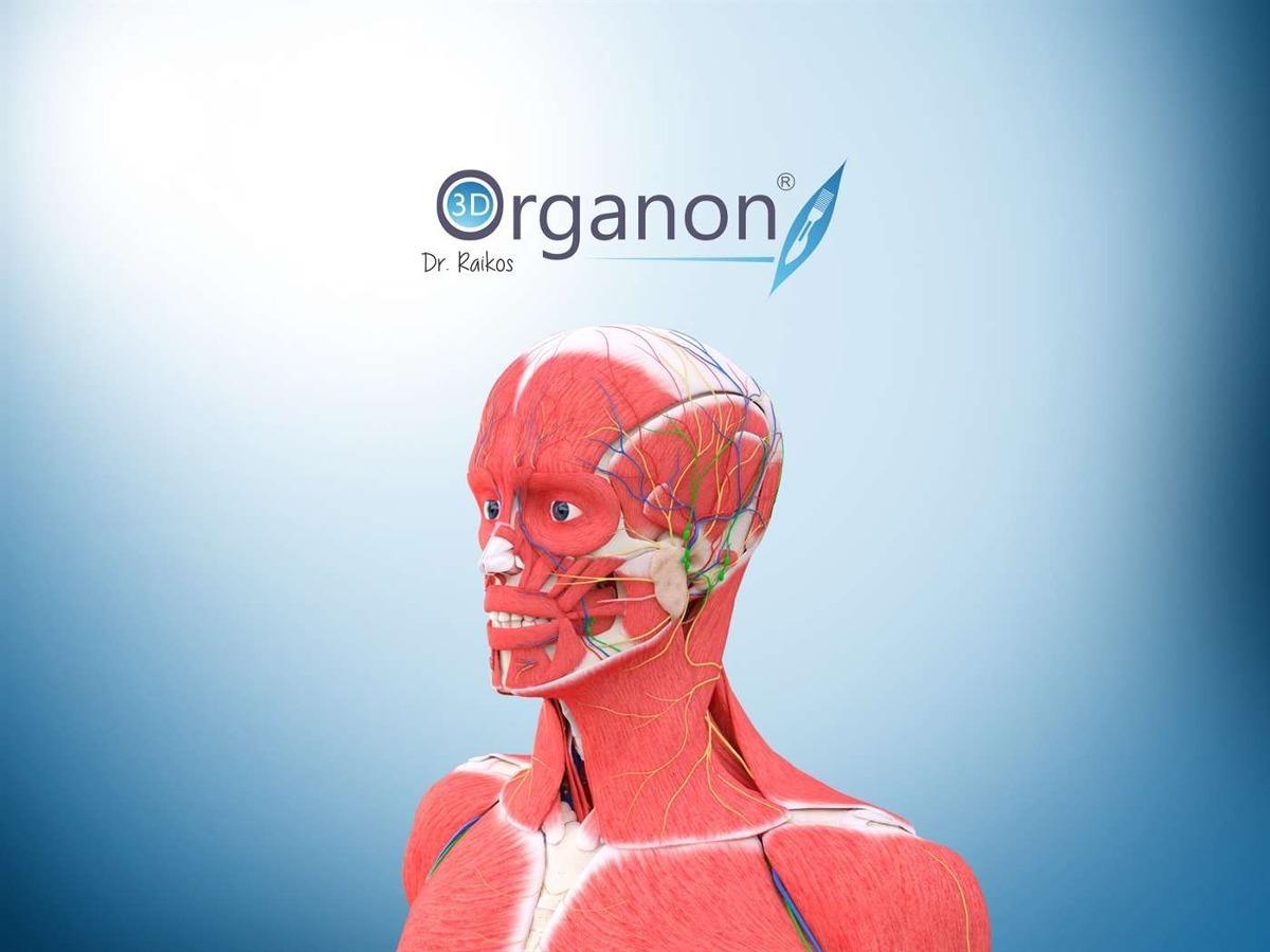 Software Atlas Anatomia Humana 3d Organon Anatomy - S/ 40,00 en ...