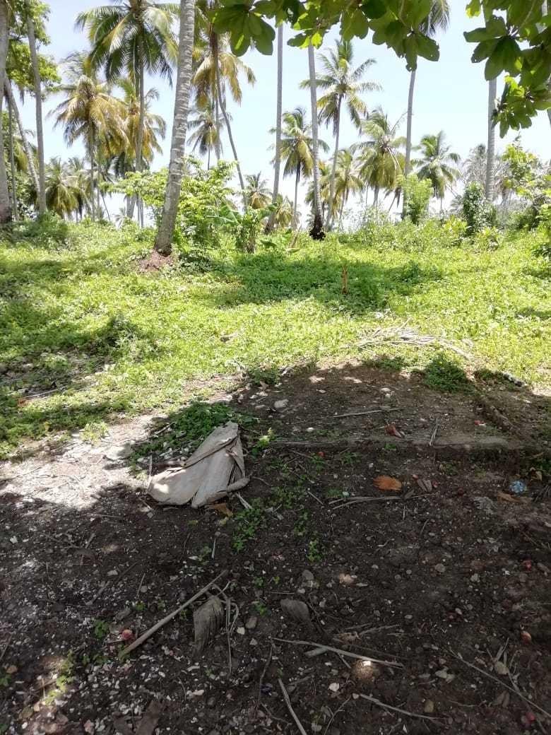 solar en los corrales, samaná, con vista a los haitises...