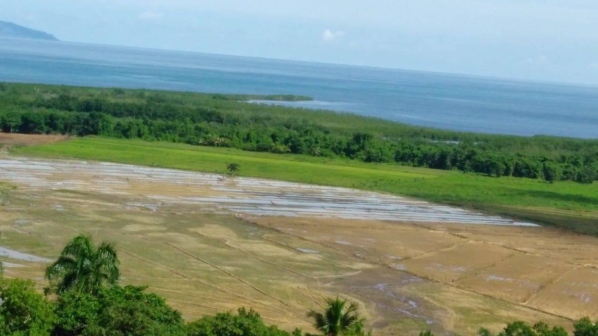 solar para proyecto turistico en sabana de la mar con playa