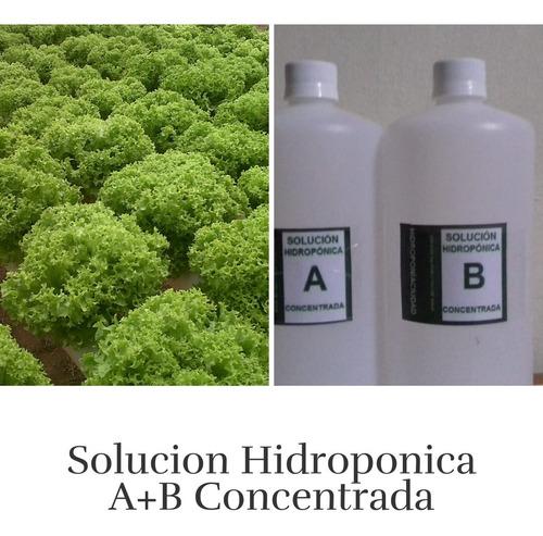 solucion hidroponica  a + b. concentrada