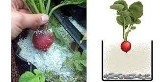 solución nutritiva hidropónica concentrada ( 500 litros )
