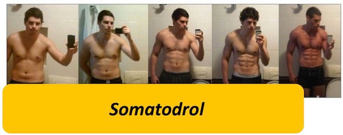 somatodrol / fuerza /100% original /musculatura /testo ultra