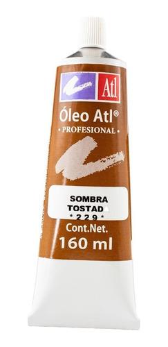 sombra tostada nº.229 oleo atl 160 ml pintura arte rodin