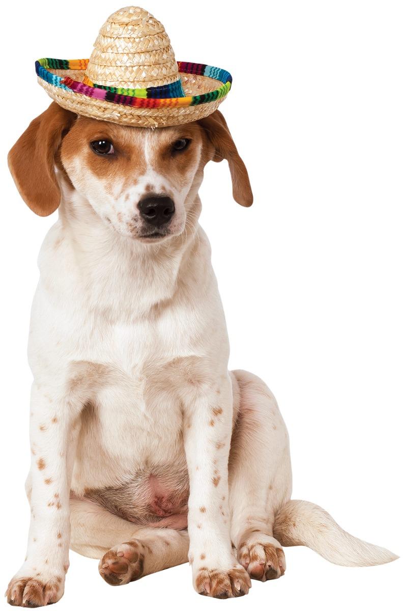 sombrero para mascota de multicolor rubies talla m grande. Cargando zoom. 298e021f64c