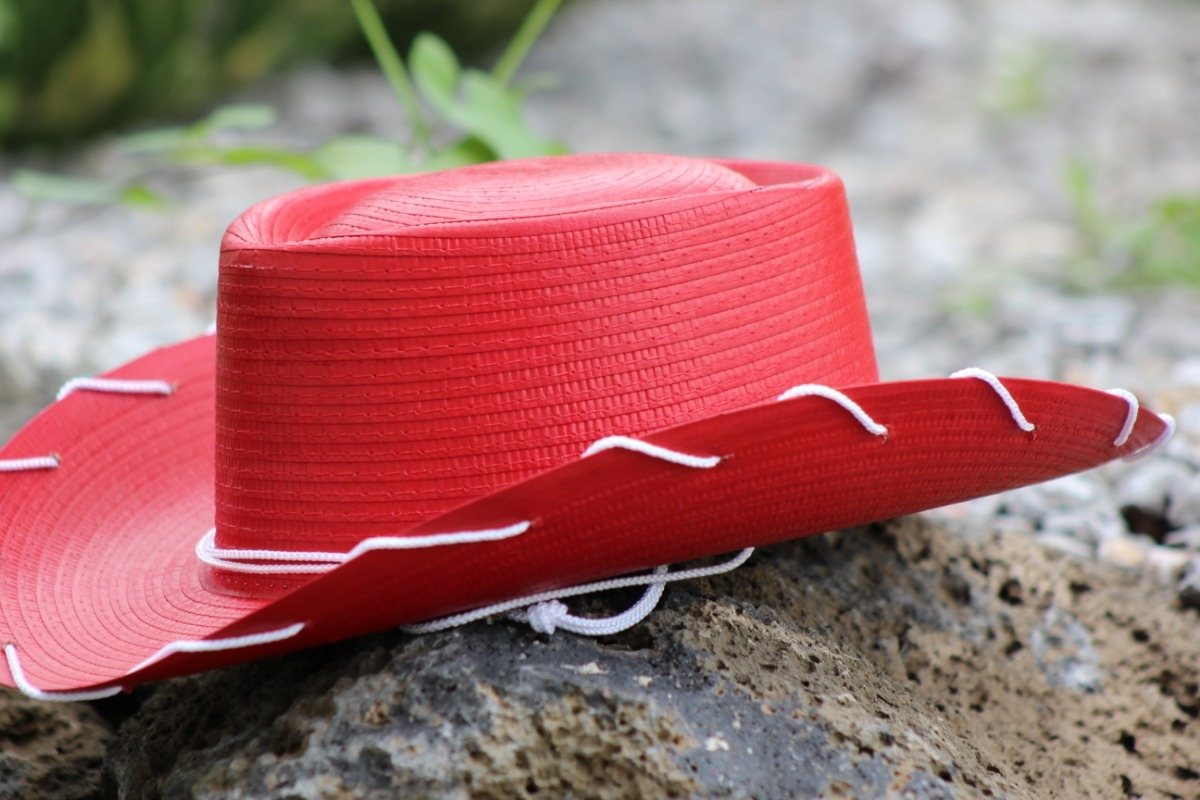 sombrero vaquerita toy story jessie rojo fiesta niño jessy. Cargando zoom. db5d5304f6d