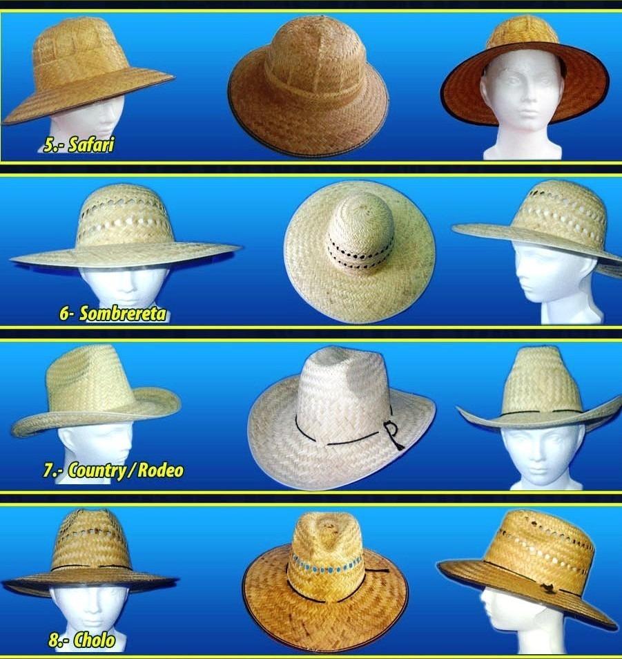 4a82821b80793 Sombreros Variedad De Modelos