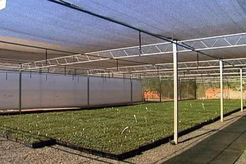 sombrite para horta 50% 4x10m com brinde só hoje