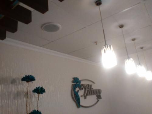 sonido ambiental con jbl parlantes de techo y pared