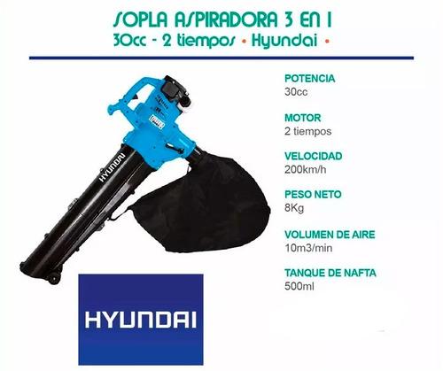 sopladora aspiradora trituradora hyundai motor 2t 30cc - sti