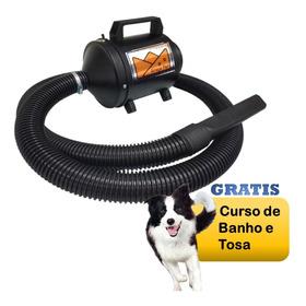 Soprador Secador Petshop 2vel Motorelectrolux Banhotosz