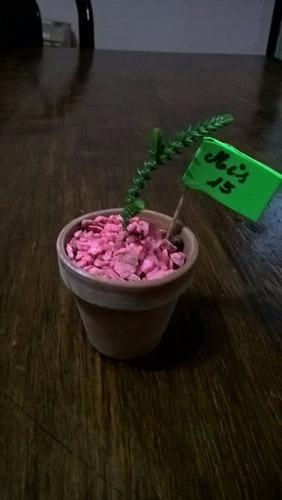 souvenir maceta5 barro cactus, suculentas personalizad