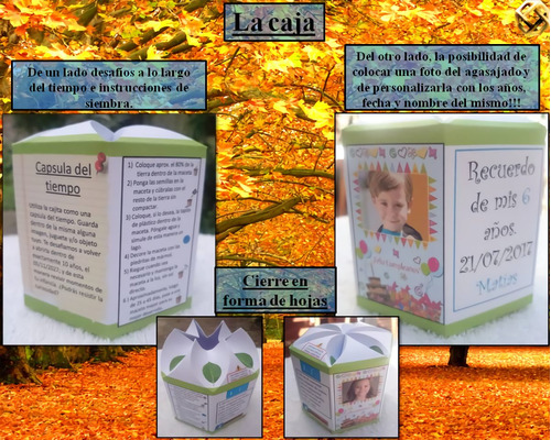 souvenirs cumpleaños infantiles bautismo original maceta nº8