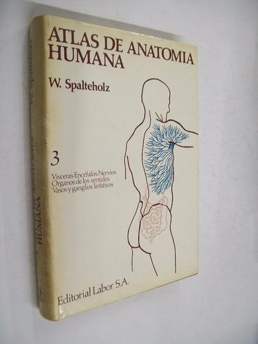 spalteholz atlas de anatomia humana 3 visceras encef.nervios