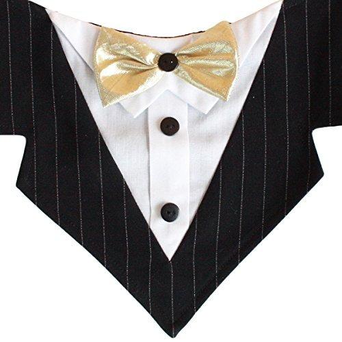 sr. darcy formal pañuelo para perros con cinta de oro de la