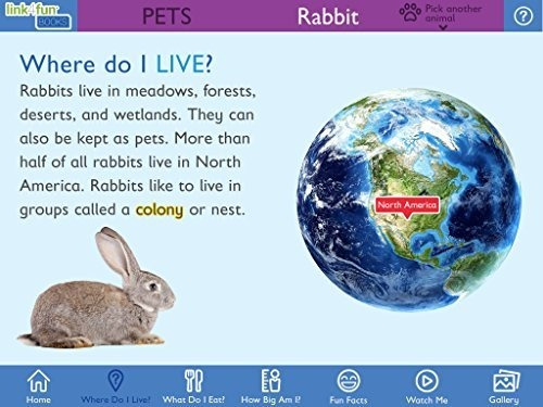 stages materiales de aprendizaje link4fun animal book set pa