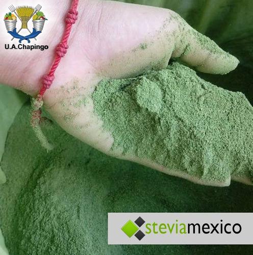 stevia en polvo 1 kg +  1 gotero 20ml  + 1 kg de sal