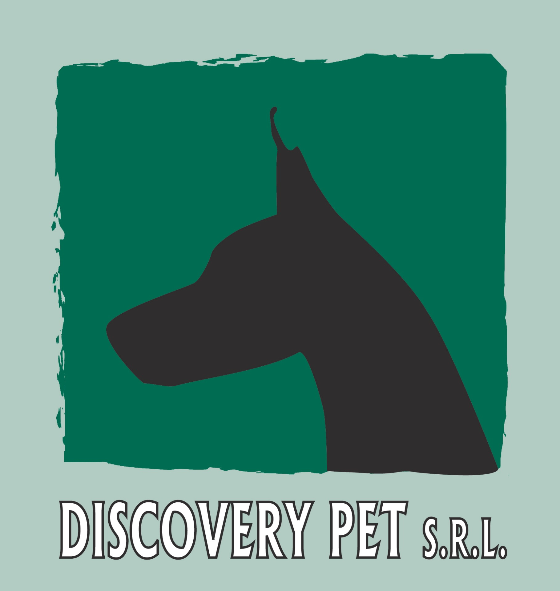 DISCOVERY PET SRL