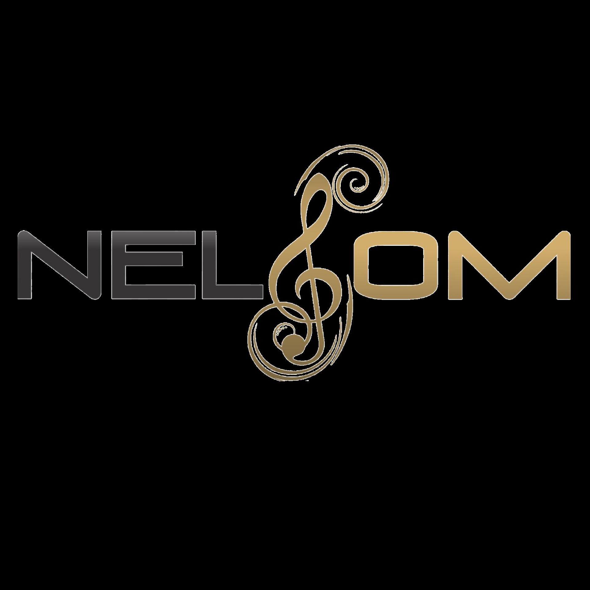 NEL-SOM INSTRUMENTOS MUSICAIS
