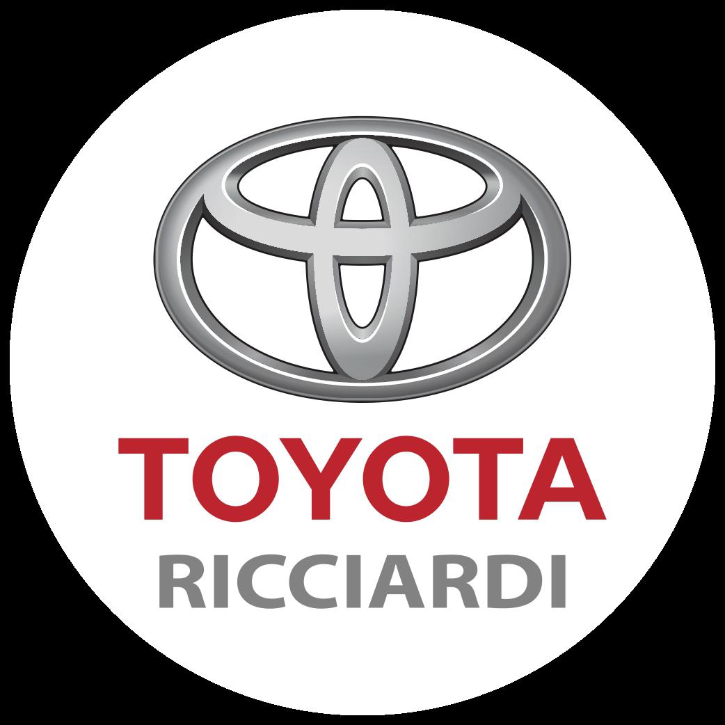 Repuestos Ricciardi