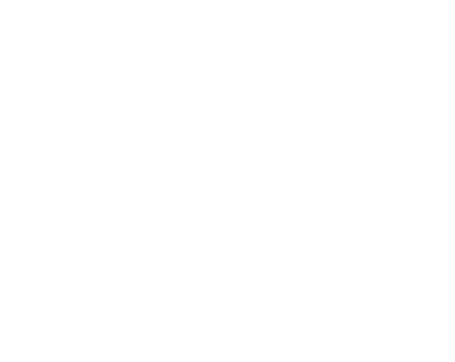 The Damage, Inc