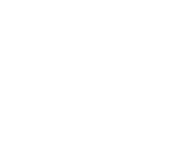 ROMA CITROEN
