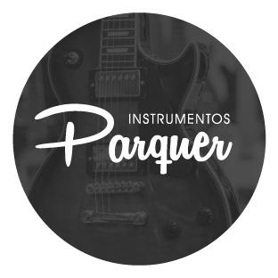 INSTRUMENTOS PARQUER