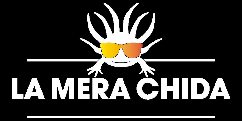 LMCH S.A. DE C.V.