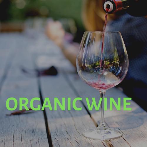 Organic Wine Argentina