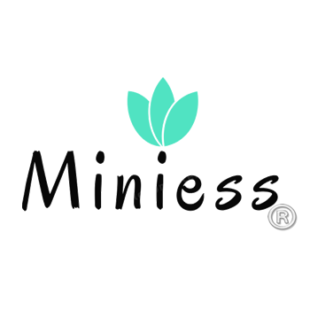 MINIESS