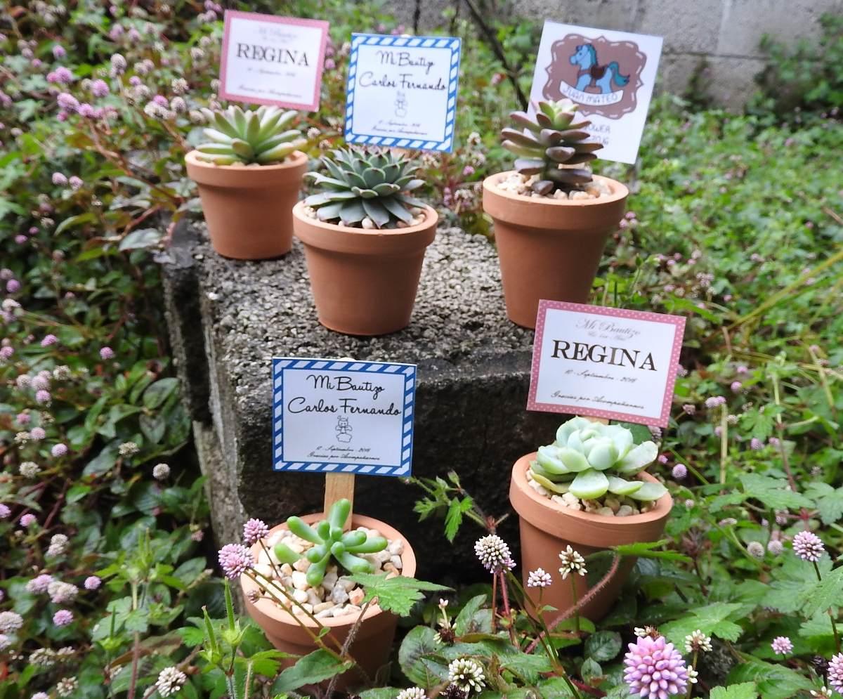 Suculentas en maceta de barro recuerdos para for Arreglos de jardines con macetas